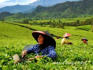 Indonesia Rusia Kerjasama Di Bidang Pertanian