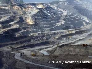 Pemerintah janji penuhi kebutuhan batubara PLN