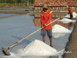 2010, produksi garam Madura terburuk dalam 30 tahun