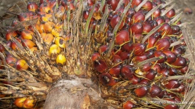 LSIP SIMP Grup Salim perkuat lini agribisnis