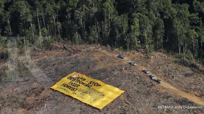 UNVR Greenpeace temukan 25 industri minyak sawit masih gunduli hutan