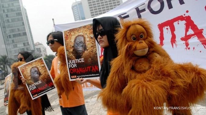 Kayung Agro Lestari peduli orangutan
