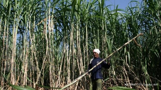Rini janji bangun 2 pabrik gula di Jateng & Jatim