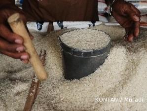 Kementerian BUMN rancang program mendukung swasembada pangan