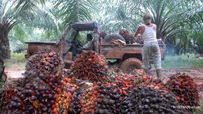 Ekspor CPO Indonesia kuartal II diramal naik 8%