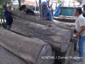 Kayu murah diburu, bisnis kayu jati semakin lesu