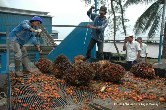 Asian Agri gandeng swasta tingkatkan produksi