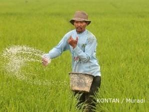 Penerapan teknologi pertanian hambat produksi padi