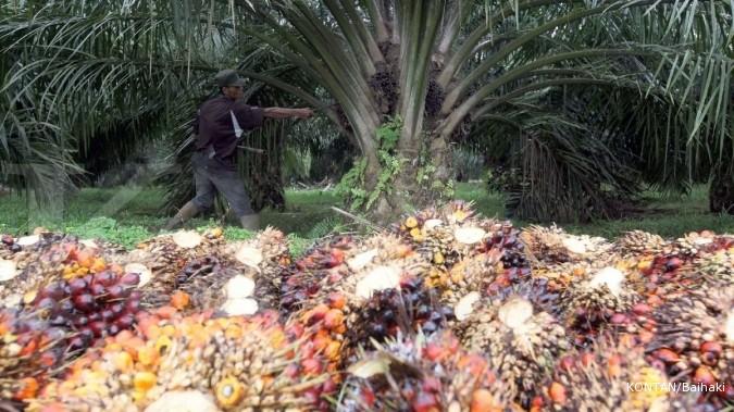 Penjualan biodisel anjlok, defisit ETWA membengkak