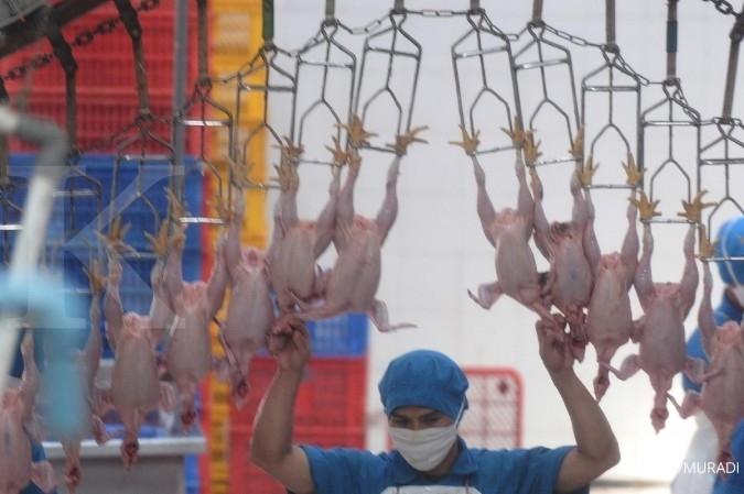 SIPD Tingkatkan budidaya unggas, Sierad Produce (SIPD) kembangkan smart poultry farming