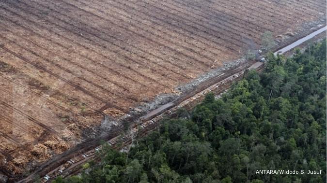 Menunggu janji Reforma Agraria Jokowi