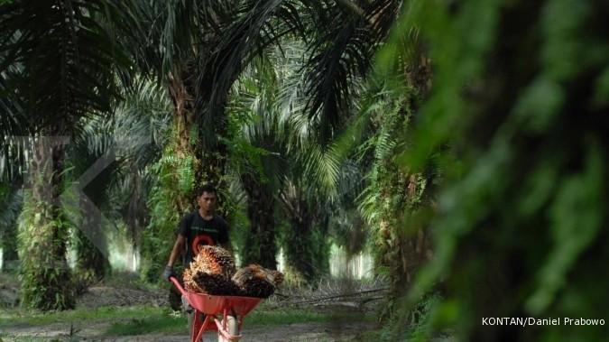 UNSP Sengkarut piutang Bakrie Sumatera Plantations