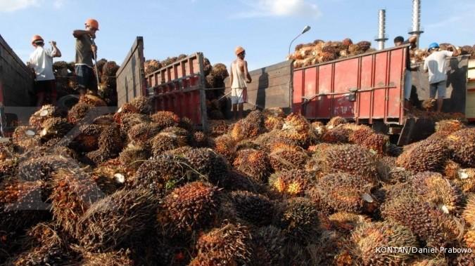 Pajak ekspor 0% mengerek harga CPO Malaysia