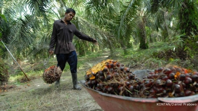 Bakrie Plantations kurangi penjualan sawit