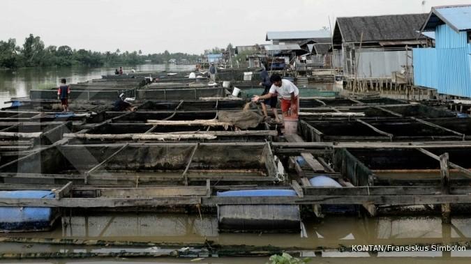 KKP akan tebar 20 juta benih ikan di 10 sungai