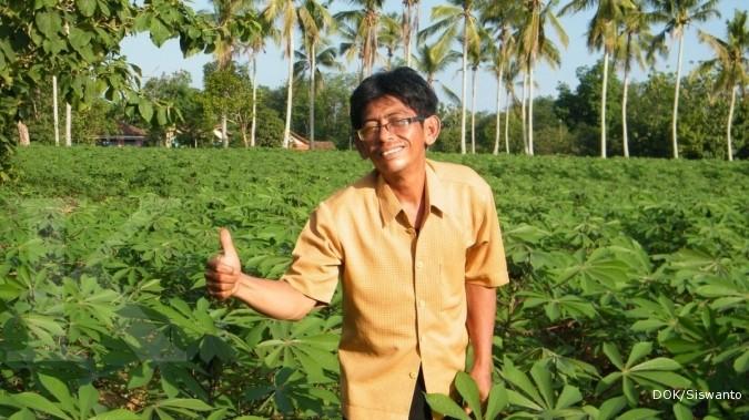 Singkong darul hidayah: Subur di lahan gembur (2)