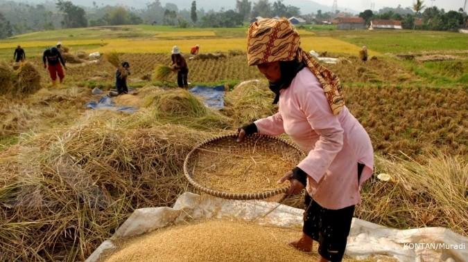 Indonesia Peru Teken Mou Di Bidang Pertanian