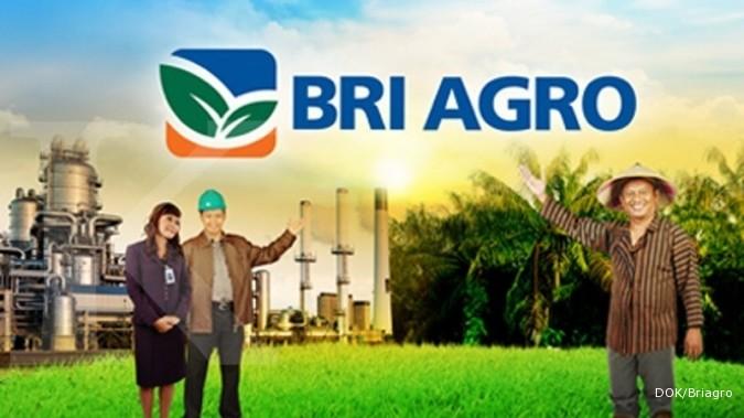 BRI Agro upayakan masuk buku III di 2018
