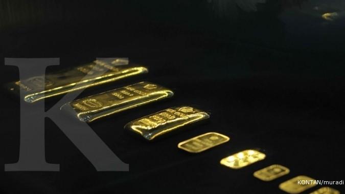 Cara Paling Pas Membiakkan Emas