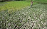 Kekurangan air bersih di Malang meluas