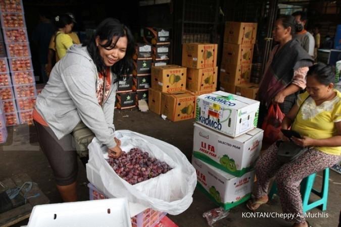 Hambatan impor, Indonesia ajukan banding ke WTO