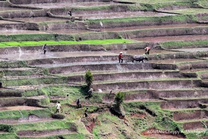 Mau dirilis Juli, lahan reforma agraria belum siap