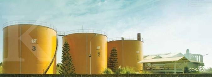 Produksi tandan buah sawit BWPT naik 20%