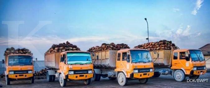 Eagle High Plantations (BWPT) dorong anak perusahaan raih sertifikat ISPO