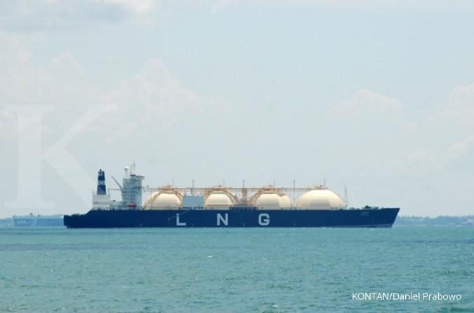 Pemerintah pastikan tidak impor gas pada 2019