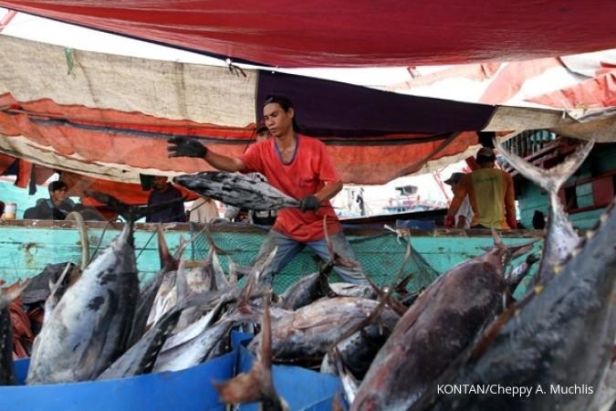 Stok ikan lestari RI 2017 diprediksi 12,5 juta ton