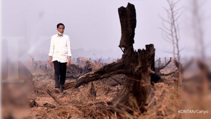 Hampir sejuta ha lahan akan dibagikan Jokowi