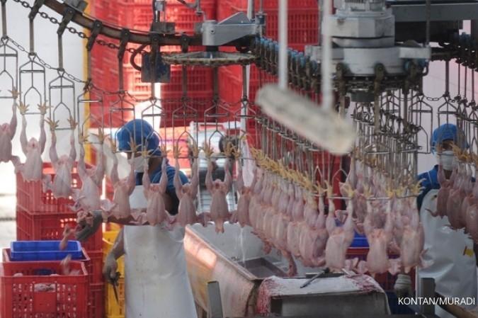 SIPD Smart poultry Sierad Produce (SIPD) diharapkan tingkatkan produktivitas dan efisiensi