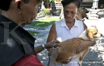 Cara cepat cegah virus rabies pasca digigit hewan