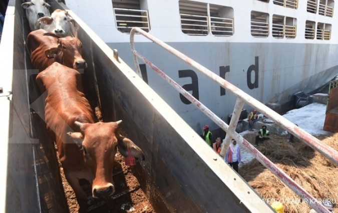 Indonesia to import 10.000 tons of beef