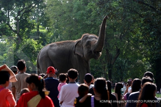 Ragunan Zoo to close on first of Idul Fitri