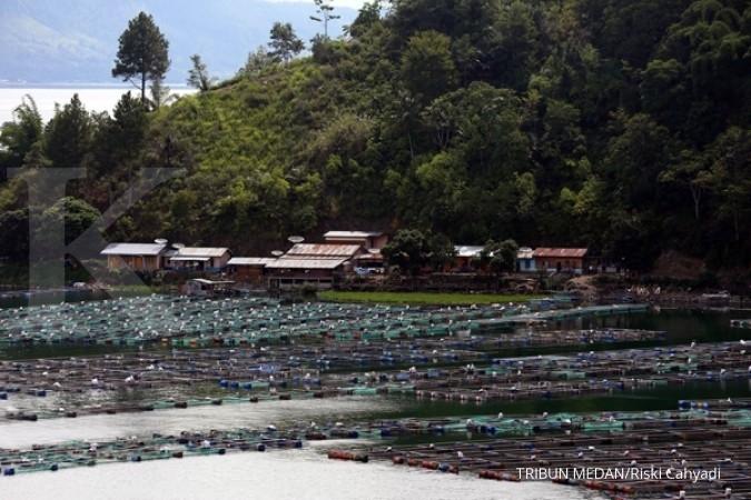 Harga pakan ikan maksimal Rp 6.000 per kg