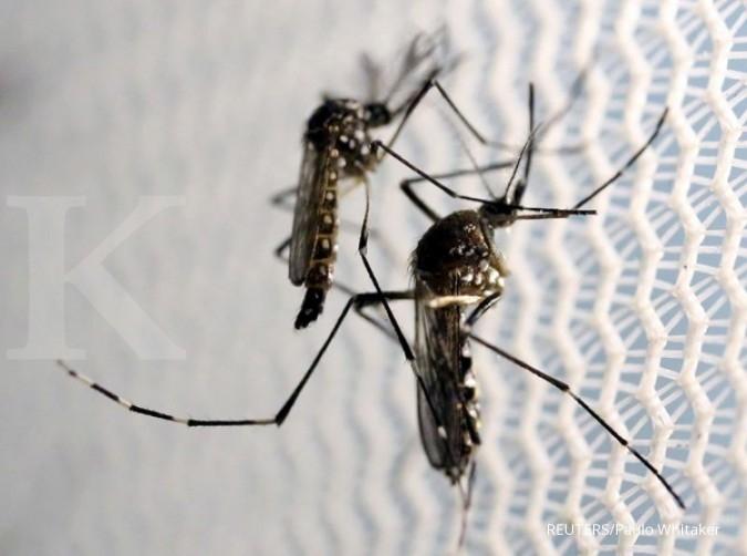 Kasus pertama Zika pada wanita hamil Malaysia