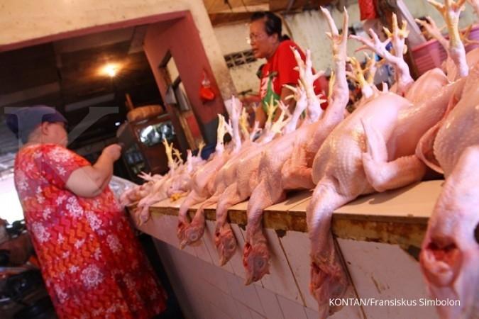 Pasar ayam Silir di Solo akan dipindah