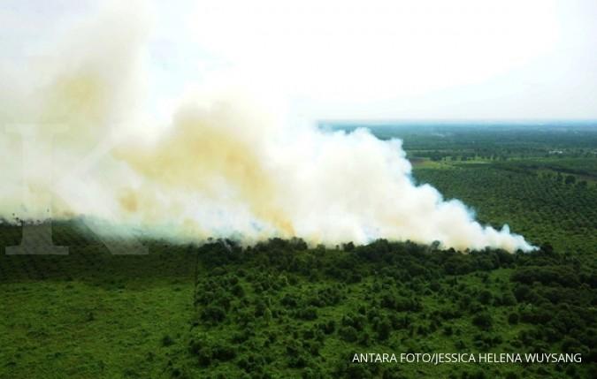 BNPB: 538 titik api terdeteksi di 23 provinsi