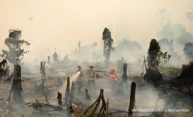 Korindo dituduh sengaja bakar hutan di Papua