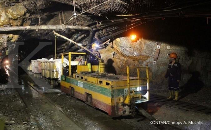 Dua tambang emas di Maluku ditutup