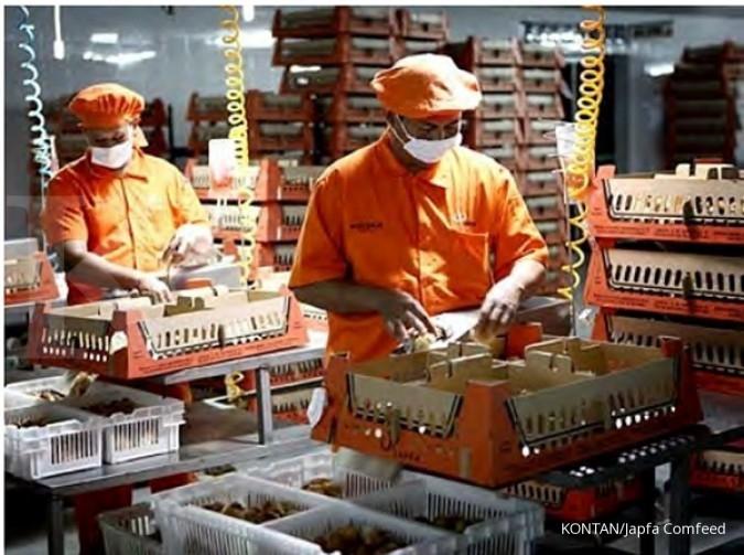 Pendapatan Japfa 2017 ditaksir Rp 29 triliun