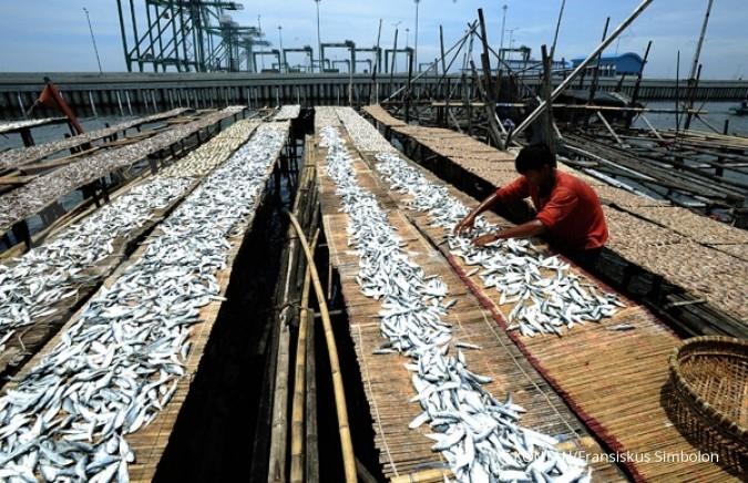 Dua tahun Jokowi, sektor perikanan melaju pesat