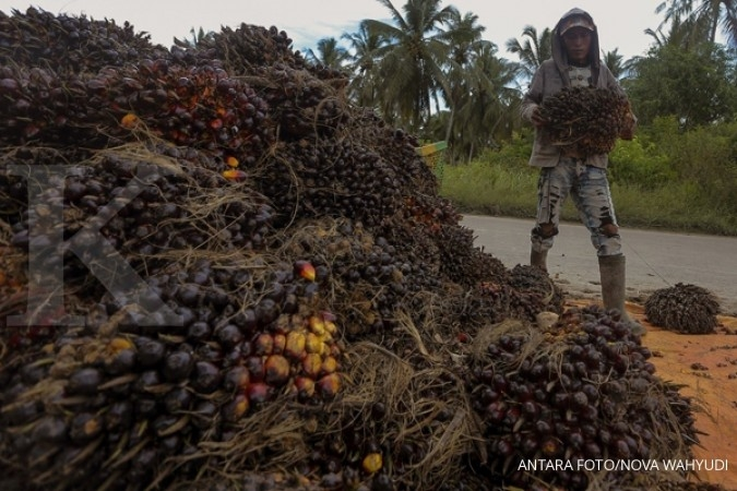 Penjualan benih terkerek kenaikan harga CPO