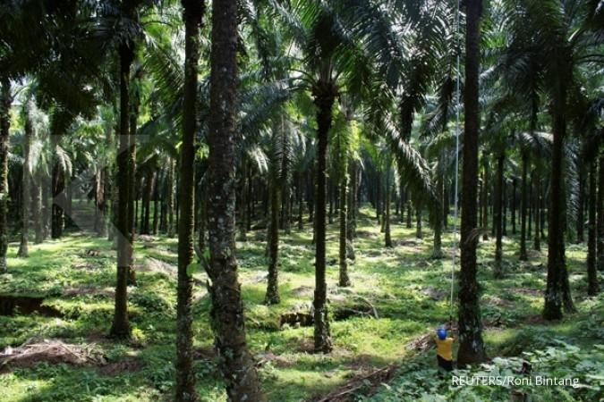 Felda resmi kuasai 37% saham Eagle High Plantation