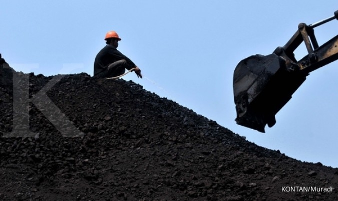 High royalty overshadows coal price rise