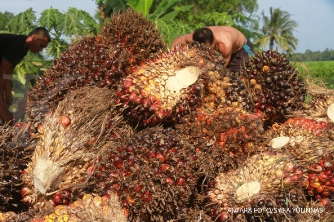 RI urged to firmly oppose EU palm oil resolution