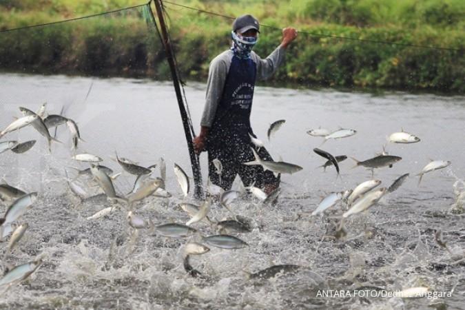 Produksi pakan ikan diprediksi 1,35 juta ton