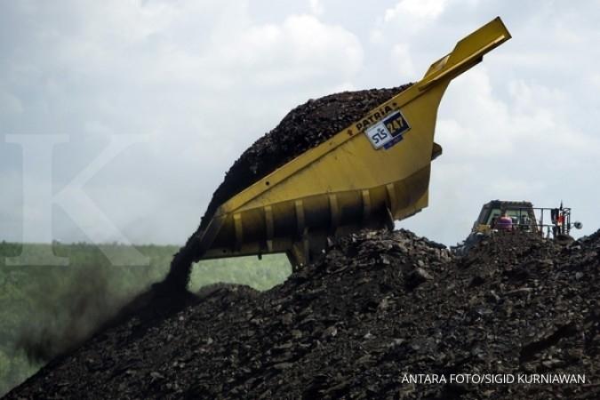 PLN incar tambang batubara di Sumatra