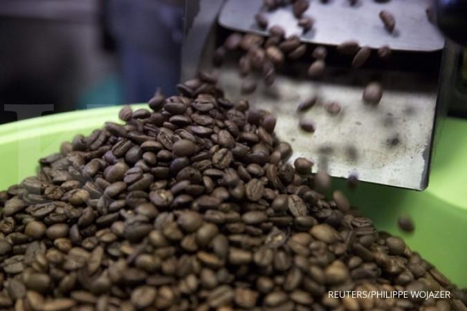 Rasa kopi Toraja begitu membekas ke Chicco Jerikho